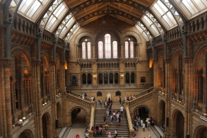 natural history museum vide Londres UK