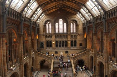 natural history museum vide Londres UK