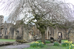 Kirkstall Abbey UK
