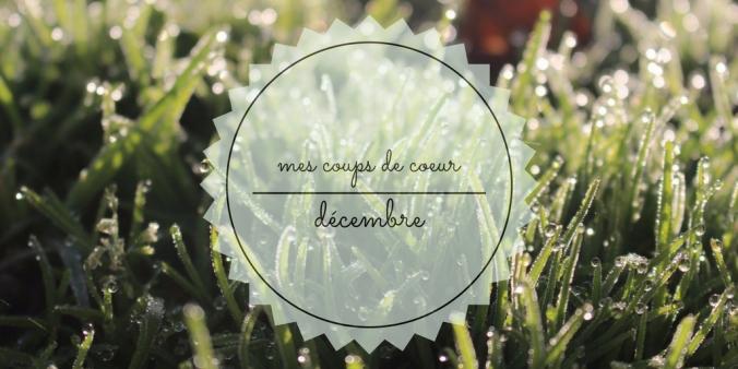 mes-coups-de-coeur décembre