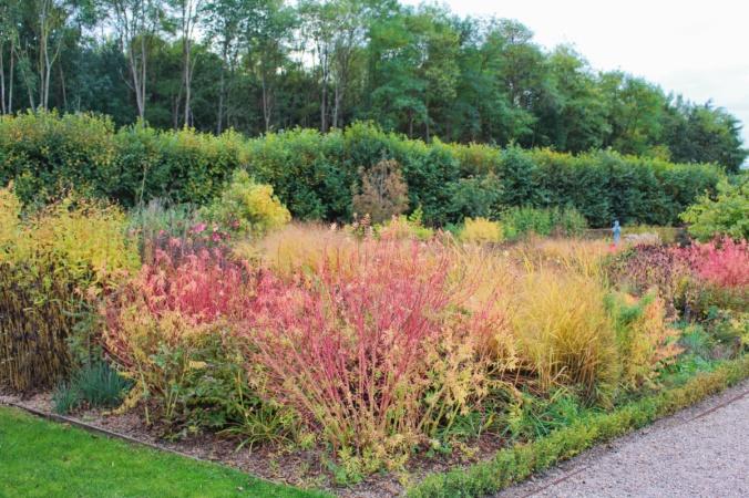 Villandry jardins 3