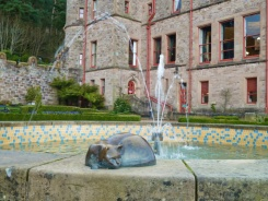 belfast castle chat irlande du nord