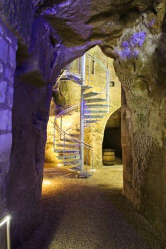 cave escalier Ampelidae