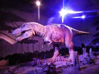T-rex Natural history museum Londres