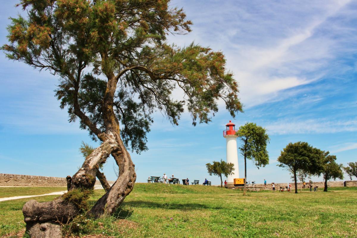 phare St Martin île de ré
